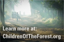 Learn more at ChildrenOfTheForest.org